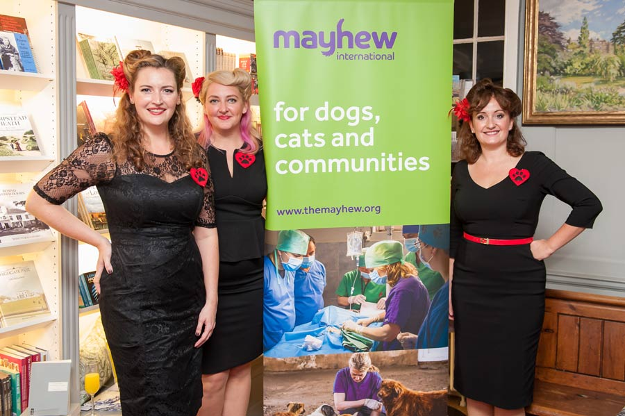 Fundraise for Mayhew Georgia