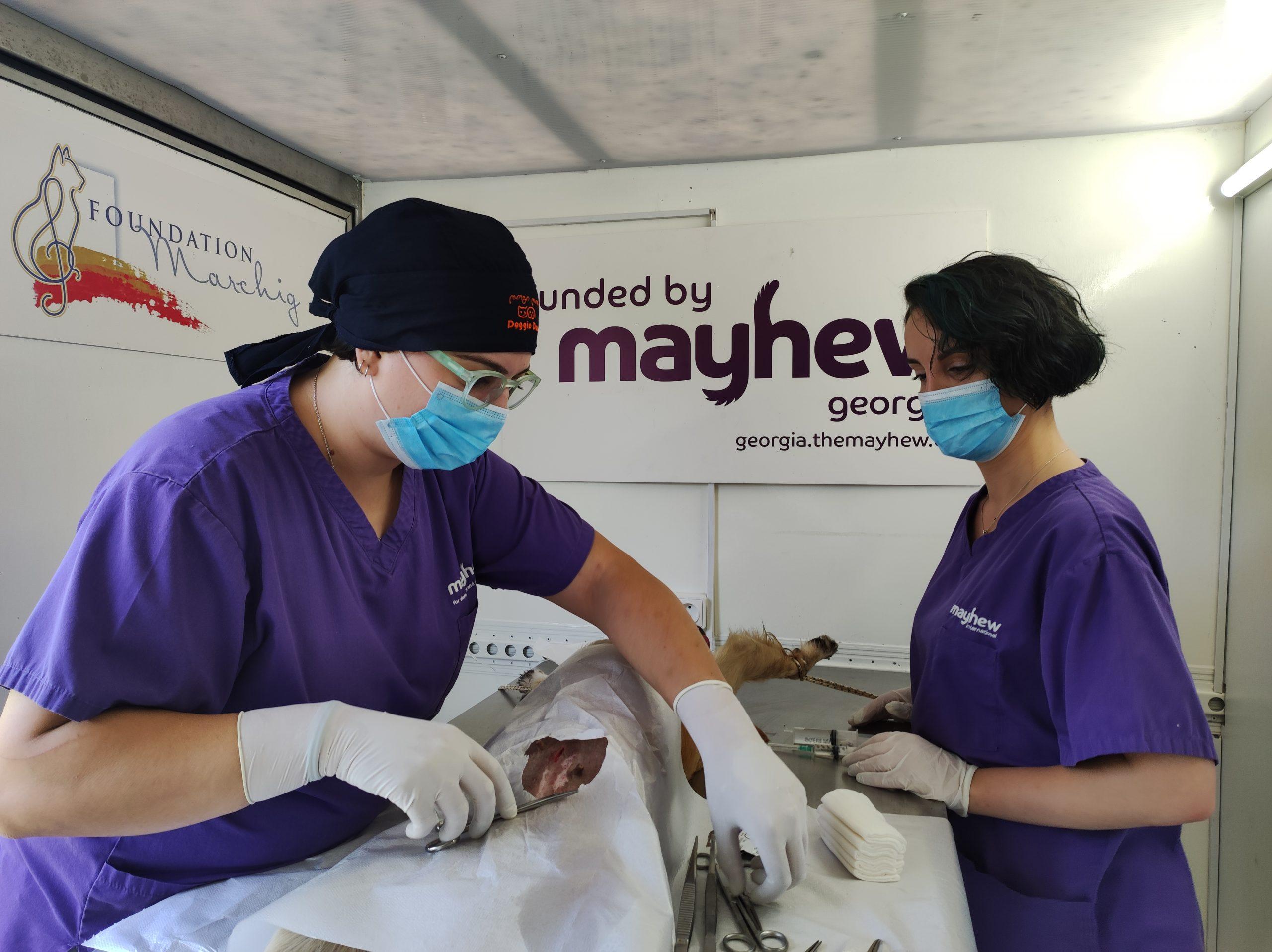 Mayhew Georgia hits the road to reach out to communities in Kakheti region, Georgia